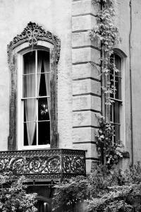 VINTAGE WINDOW HISTORIC SAVANNAH GEORGIA ARCHITECTURE BLACK AND